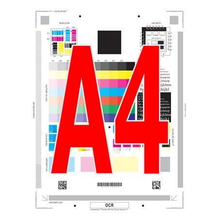 Libro A4 en color encuadernado en espiral